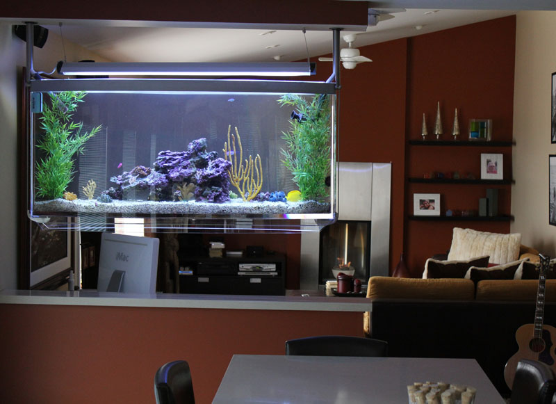 Home aquarium design home decorating ideas for Aquarium interior designs pictures